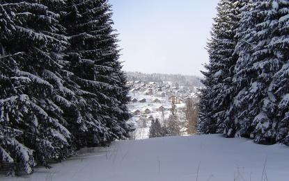 Village du Mont d'Or